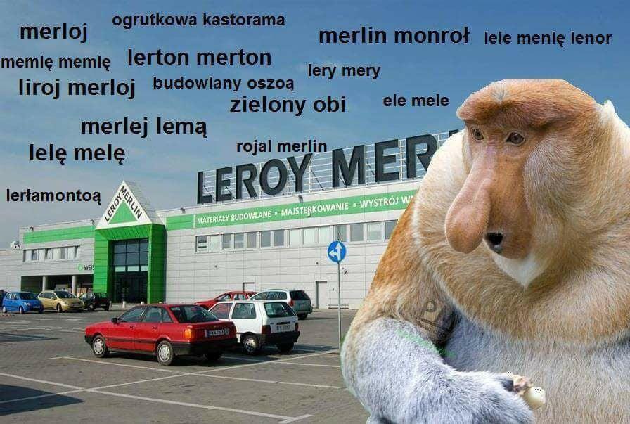 Carrefour Auchan Leroy Merlin Jak Wymawiac Popularne Nazwy Sieci Handlowych Blog O Promocjach Wyprzedazach I Przecenach Sklepowe Okazje Z Moja Gazetka
