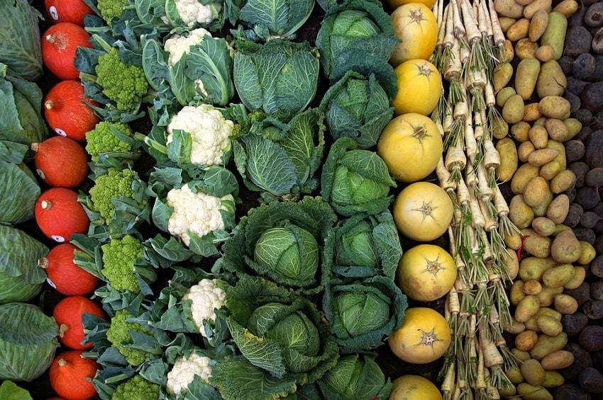 warzywa i owoce jak kupować