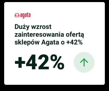 raport 2019 Agata