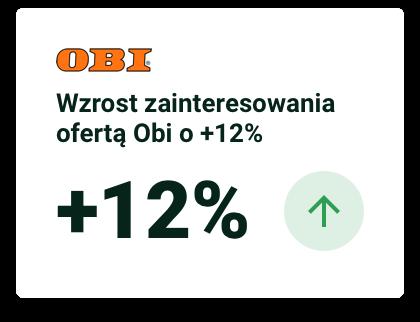 raport 2019 OBI